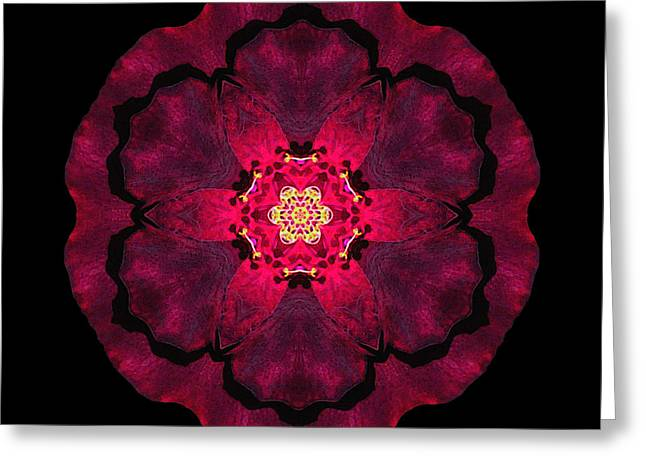 Beach Rose II Flower Mandala Greeting Card by David J Bookbinder