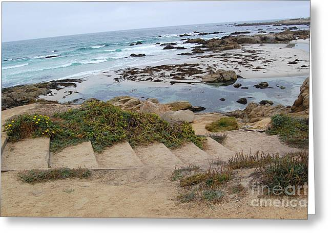 Greeting Card featuring the photograph Descending To The Beach Monterey by Debra Thompson