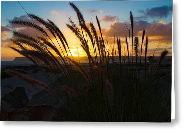 Beach Sunset Greeting Card by Marc Bottiglieri