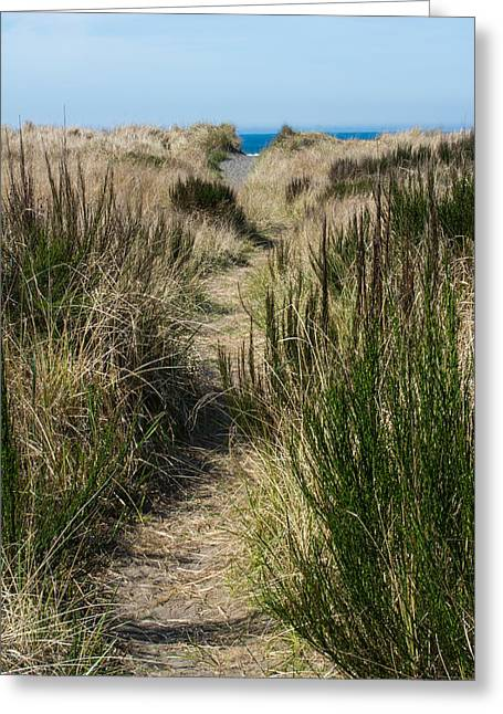 Beach Trail Greeting Card by Tikvah's Hope