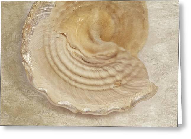 Beach Treasure Greeting Card by Bonnie Bruno