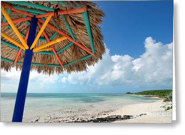 Beach Umbrella At Coco Cay Greeting Card by Amy Cicconi