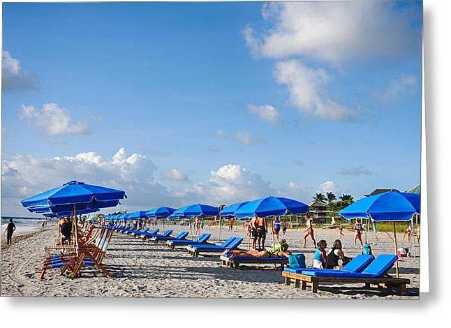 Beach Umbrellas Greeting Card by Don Durfee