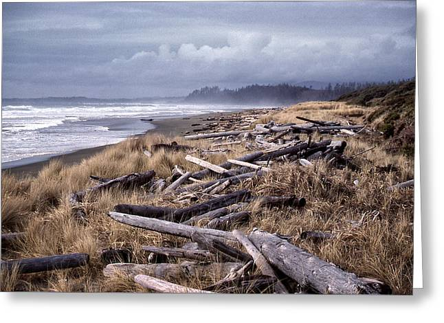 Greeting Card featuring the photograph Beached Driftlogs by Richard Farrington
