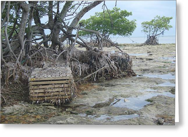 Greeting Card featuring the photograph Beached Lobster Trap by Robert Nickologianis