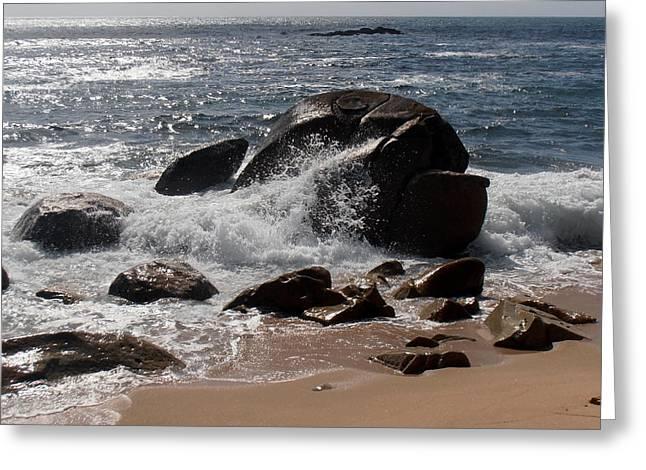 Beaching Blubber Greeting Card