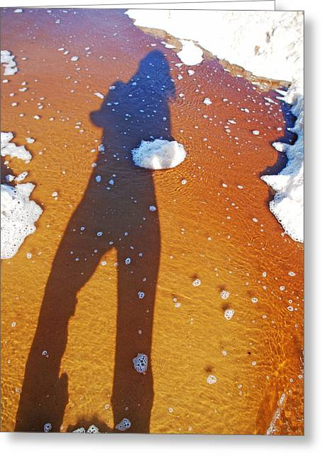 Greeting Card featuring the photograph Beachscape by Ankya Klay