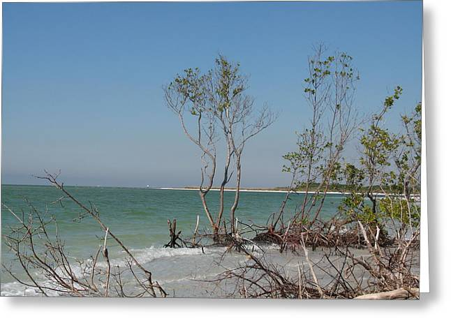 Fort De Soto Beachview Greeting Card by Christiane Schulze Art And Photography
