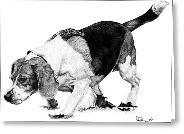 Beagle On The Hunt Greeting Card by Rob Christensen