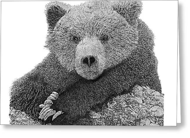 Bear 2 Greeting Card