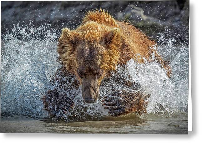 Bear Action Greeting Card