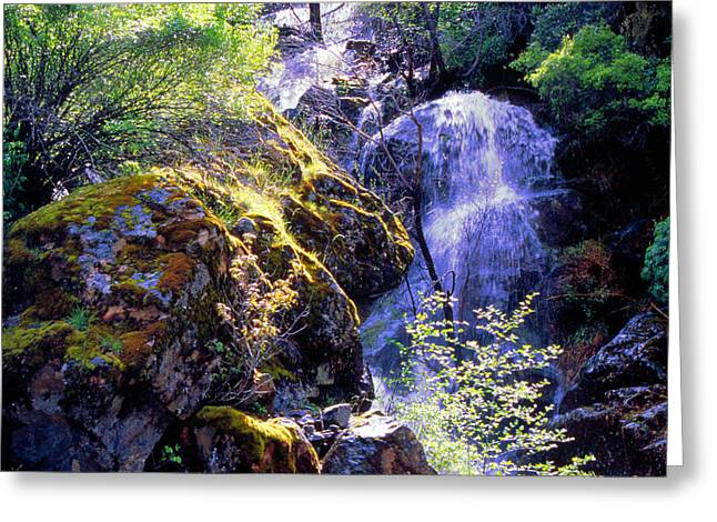 Bear Creak Tributary Bryceburg Junction Near Yosemite Greeting Card