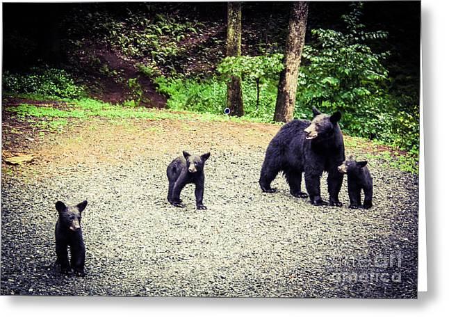 Bear Family Affair Greeting Card by Jan Dappen