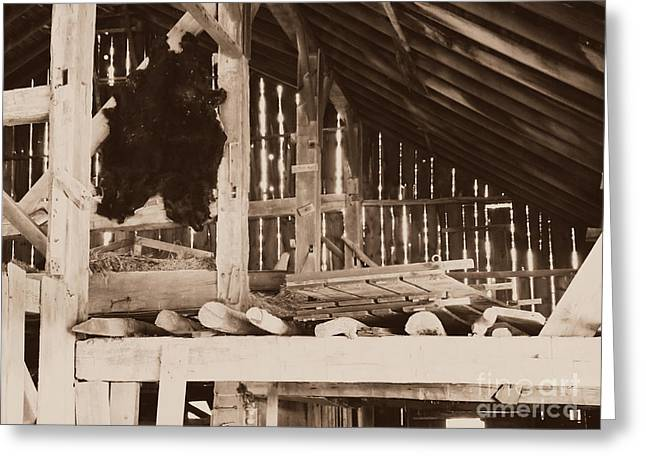 Bear Pelt Drying In Old Barn Greeting Card by Deborah Fay