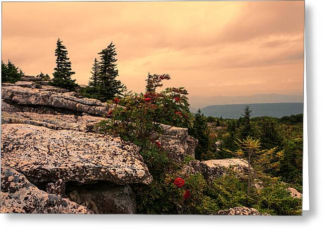 Bear Rocks Sunset Greeting Card by Diana Boyd
