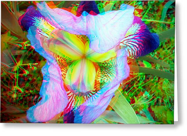 Bearded Iris Cultivar - Use Red-cyan 3d Glasses Greeting Card by Brian Wallace