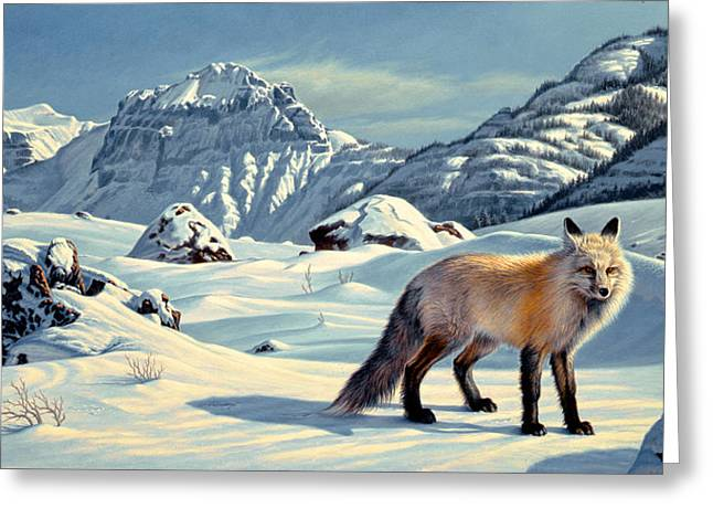 Beartooth Fox Greeting Card