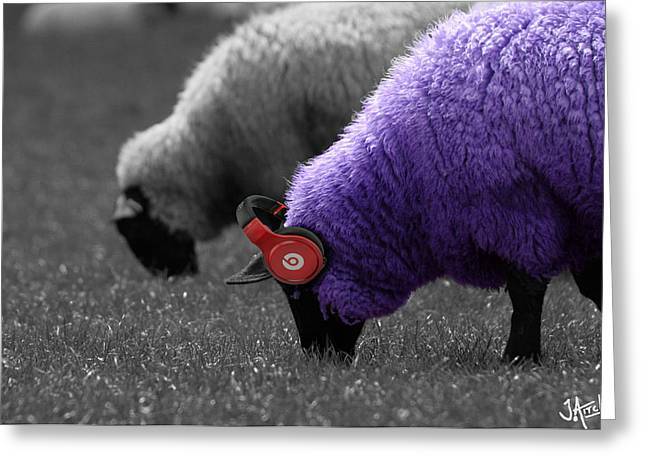 Beat Sheep Greeting Card by Jay Aitch