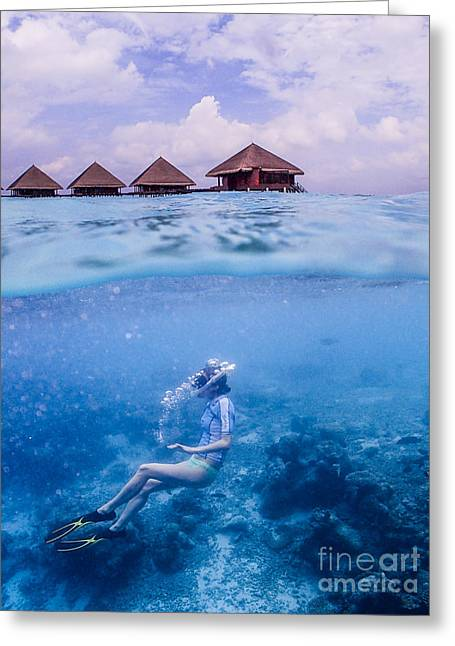 Beautiful Above And Below 2 Greeting Card by Hannes Cmarits