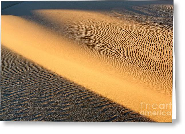 Beautiful Abstract Sand Dunes Of The Rancho Guadalupe Dunes Preserve In California Greeting Card by Jamie Pham