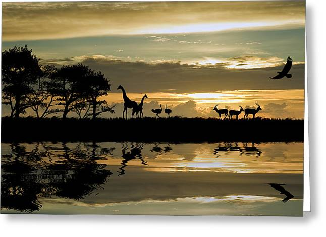Beautiful African Themed Silhouette With Stunning Sunset Sky Greeting Card