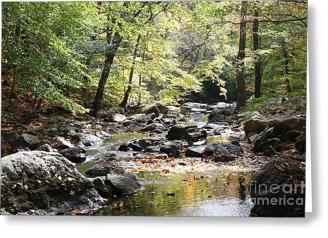 Beautiful Babbling Brook In Sleepy Hollow Greeting Card