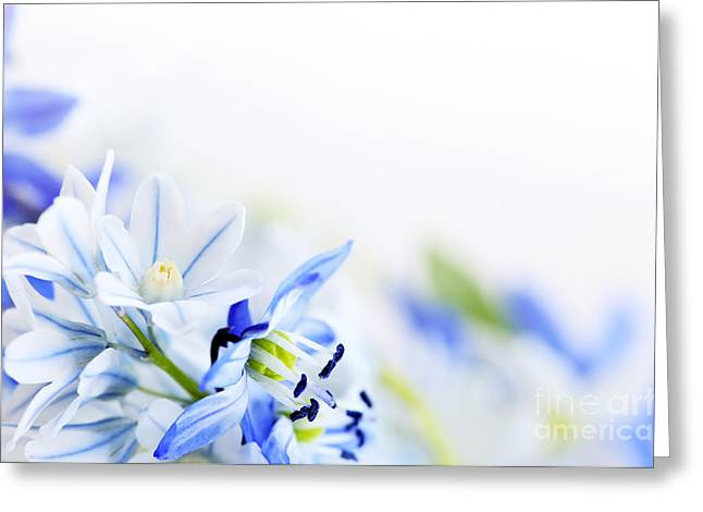 Beautiful  Blue Flower Art Greeting Card by Boon Mee