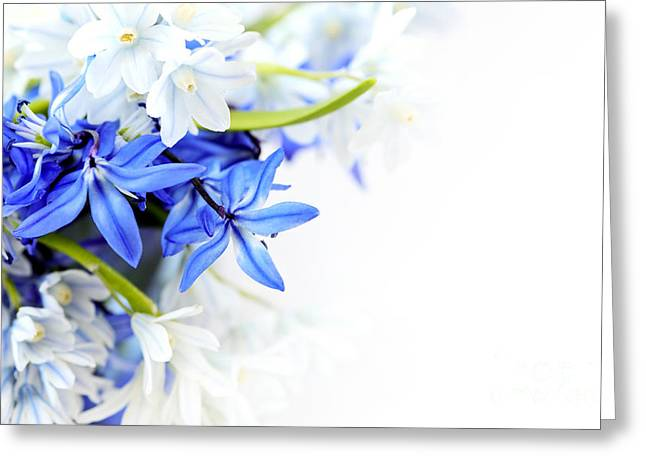 Beautiful Blue White Flower Greeting Card by Boon Mee