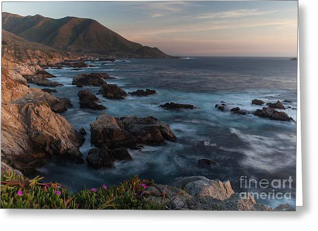 Beautiful California Coast In Spring Greeting Card by Mike Reid