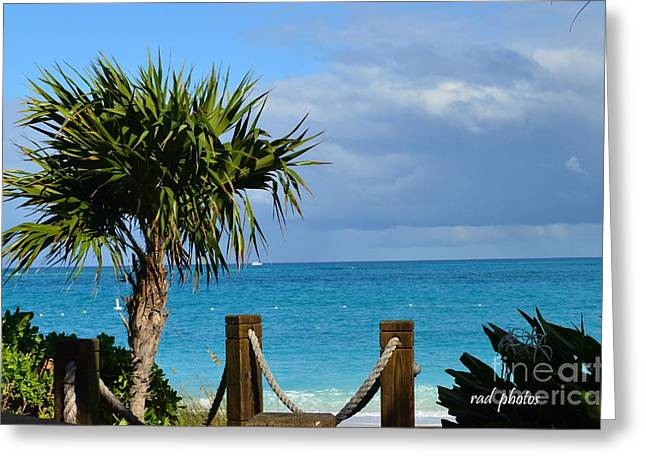 Beautiful Day At The Beach Greeting Card by Judy Wolinsky
