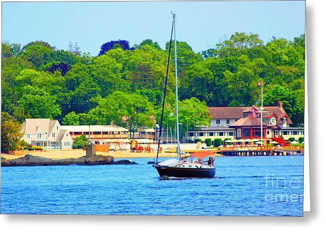 Beautiful Day For Sailing Greeting Card by Judy Palkimas