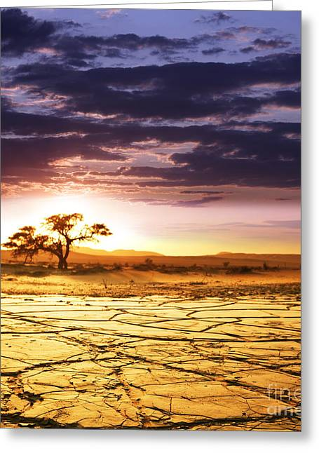 Beautiful Dead Valley Greeting Card by Boon Mee