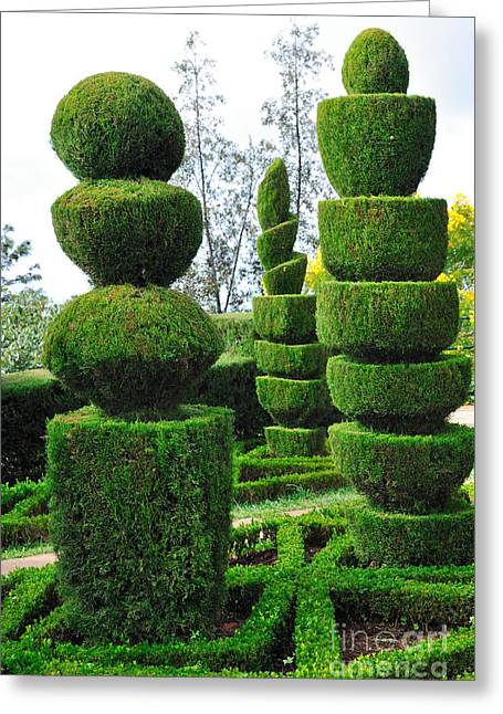 Beautiful Decorative Green Park Greeting Card by Boon Mee