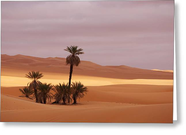 Beautiful Desert Greeting Card by Ivan Slosar