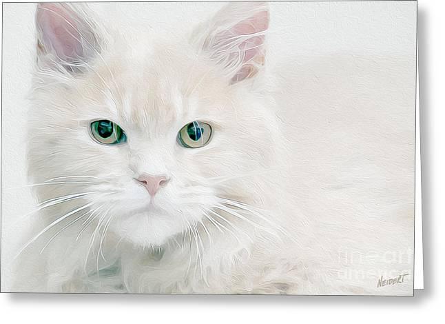 Beautiful Eyes Greeting Card by Jon Neidert