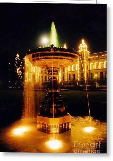 Beautiful Fountain At Night Greeting Card by John Malone