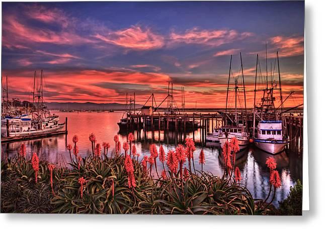 Beautiful Harbor Greeting Card