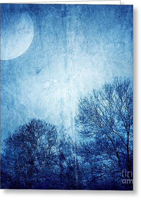 Beautiful Moonlight Photos Greeting Card by Boon Mee