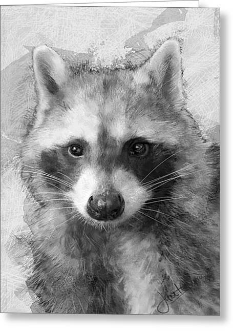 Beautiful Raccoon Greeting Card