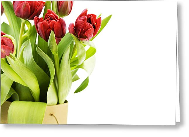 Beautiful Red Flower Greeting Card by Boon Mee