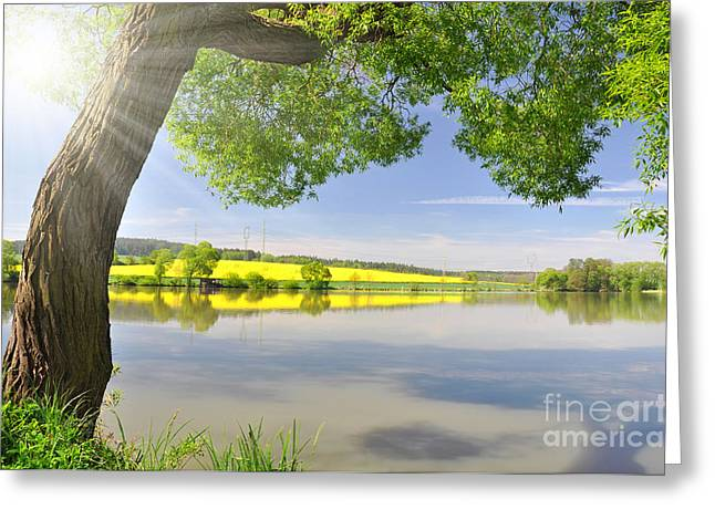 Beautiful Spring Landscape Greeting Card by Boon Mee