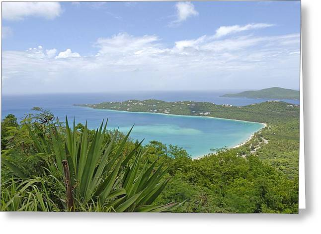 Beautiful St Thomas Greeting Card by Willie Harper