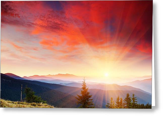 Beautiful Summer Landscape In Mountains Greeting Card