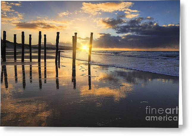 Beautiful Sunset Dunedin New Zealand Greeting Card by Colin and Linda McKie
