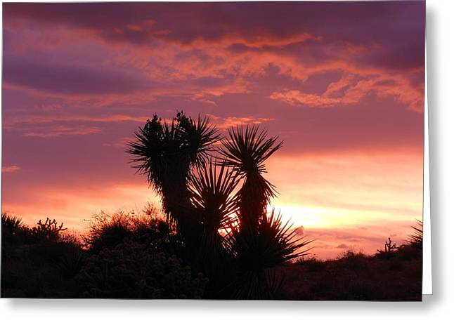 Beautiful Sunset In Arizona Greeting Card