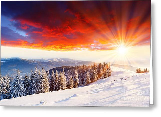 Beautiful Sunset In The Winter Greeting Card by Boon Mee