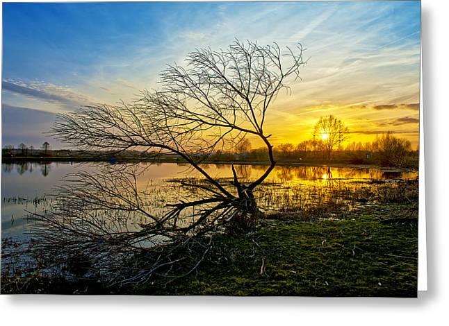 Beautiful Sunset Reflecting In A Lake Greeting Card by Jaroslaw Grudzinski