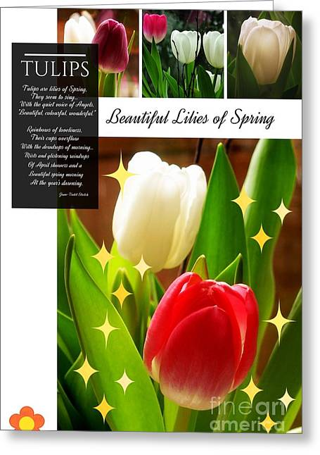 Beautiful Tulip Series 1 Greeting Card