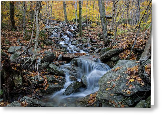 Beautiful Vermont Scenery 31 Greeting Card by Paul Cannon