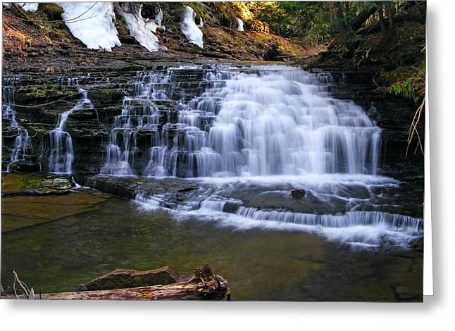 Beautiful Waterfalls Greeting Card by Sheila Savage